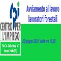 AVVIAMENTO LAVORI FORESTALI IV° DISTRETTO COMUNE DI ROCCAPALUMBA...